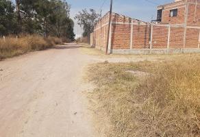 Foto de terreno habitacional en venta en  , el zapote del valle, tlajomulco de zúñiga, jalisco, 4566580 No. 01