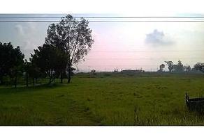 Foto de terreno habitacional en venta en  , el zapote del valle, tlajomulco de zúñiga, jalisco, 5854702 No. 01