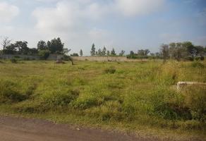 Foto de terreno habitacional en venta en  , el zapote del valle, tlajomulco de zúñiga, jalisco, 5873939 No. 01