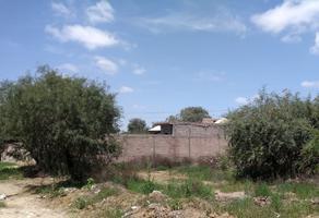 Foto de terreno habitacional en venta en  , el zapote, soledad de graciano sánchez, san luis potosí, 0 No. 01