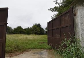 Foto de terreno habitacional en venta en ema, santiago, nuevo león, 67313 , jardines de santiago, santiago, nuevo león, 0 No. 01