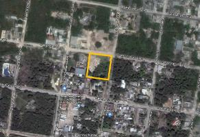 Foto de terreno comercial en venta en emiliano zapata , alfredo v bonfil, benito juárez, quintana roo, 9281142 No. 01