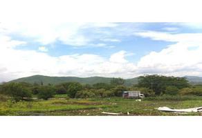 Foto de terreno habitacional en venta en emiliano zapata , conjunto jacarandas i y ii, yautepec, morelos, 15909310 No. 01