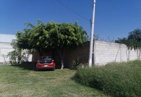 Foto de casa en venta en  , emiliano zapata, cuautla, morelos, 13695535 No. 01