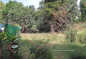 Foto de terreno comercial en venta en  , emiliano zapata, cuautla, morelos, 14509177 No. 01