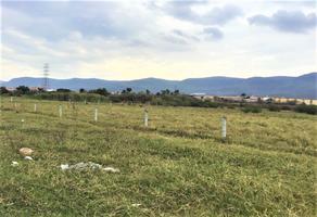 Foto de terreno habitacional en venta en  , emiliano zapata, cuernavaca, morelos, 16353413 No. 01