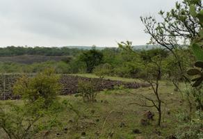 Foto de terreno habitacional en venta en emiliano zapata , el jazmín, san juan del río, querétaro, 0 No. 01