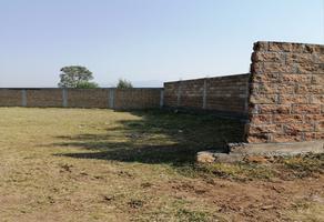 Foto de terreno habitacional en venta en  , emiliano zapata, morelia, michoacán de ocampo, 0 No. 01