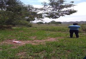 Foto de terreno habitacional en venta en emiliano zapata , san vicente chicoloapan de juárez centro, chicoloapan, méxico, 18353214 No. 01