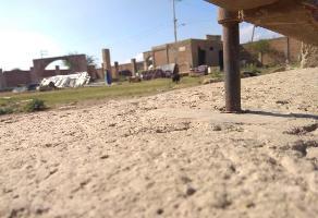 Foto de terreno habitacional en venta en emiliano zapata , santa luc?a, lagos de moreno, jalisco, 6351287 No. 02