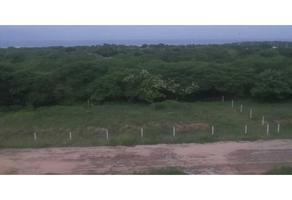 Foto de terreno habitacional en venta en  , emiliano zapata, santa maría colotepec, oaxaca, 0 No. 01