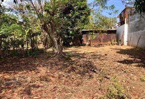 Foto de terreno habitacional en venta en emiliano zapata s/n , emiliano zapata, santa maría colotepec, oaxaca, 0 No. 01
