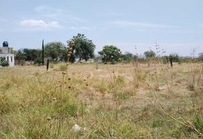 Foto de terreno habitacional en venta en emiliano zapata s/n , san diego acapulco, atlixco, puebla, 0 No. 01