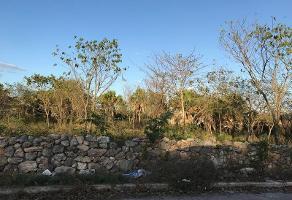 Foto de terreno habitacional en venta en  , emiliano zapata sur, mérida, yucatán, 11818631 No. 01