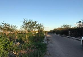 Foto de terreno habitacional en venta en  , emiliano zapata sur, mérida, yucatán, 11818635 No. 01