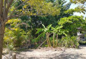 Foto de terreno habitacional en venta en encamizadero , temixco centro, temixco, morelos, 0 No. 01