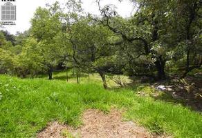 Foto de terreno habitacional en venta en encino grande , 2a del moral del pueblo de tetelpan, álvaro obregón, df / cdmx, 5740283 No. 01