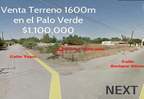 Foto de terreno habitacional en venta en enrique oliver y tepic 0, palo verde, hermosillo, sonora, 0 No. 01