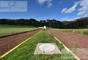 Foto de terreno habitacional en venta en  , epazoyucan centro, epazoyucan, hidalgo, 11240743 No. 01