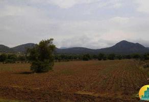 Foto de terreno habitacional en venta en  , epazoyucan centro, epazoyucan, hidalgo, 11775662 No. 01