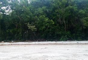 Foto de terreno habitacional en venta en esquina constituyentes , comité proterritorio, othón p. blanco, quintana roo, 0 No. 01