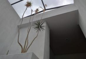 Foto de casa en renta en estorninos , lomas de las águilas, álvaro obregón, df / cdmx, 16975547 No. 05