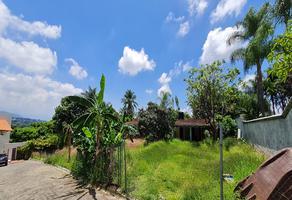 Foto de terreno industrial en venta en estrella del norte , rancho tetela, cuernavaca, morelos, 9190964 No. 01