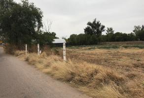 Foto de terreno comercial en venta en eugenio garza 1, nazario ortiz garza, aguascalientes, aguascalientes, 15001079 No. 01