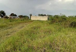 Foto de terreno habitacional en venta en  , eusebio jauregui, cuautla, morelos, 0 No. 01