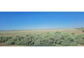 Foto de terreno habitacional en venta en  , ex ejido coahuila, mexicali, baja california, 0 No. 01