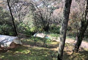 Foto de terreno habitacional en venta en  , ex-hacienda jajalpa, ocoyoacac, méxico, 15818651 No. 01