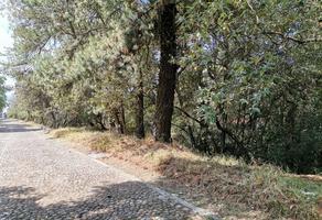 Foto de terreno habitacional en venta en  , ex-hacienda jajalpa, ocoyoacac, méxico, 20135961 No. 01
