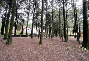 Foto de terreno habitacional en venta en  , ex-hacienda jajalpa, ocoyoacac, méxico, 0 No. 01