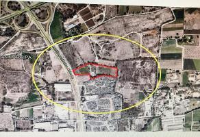 Foto de terreno habitacional en venta en  , expropiación petrolera, soledad de graciano sánchez, san luis potosí, 11260333 No. 01