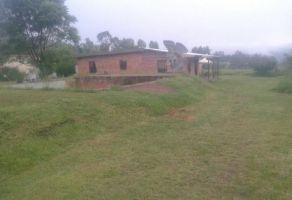 Foto de rancho en venta en Colotlan Centro, Colotlán, Jalisco, 13215299,  no 01