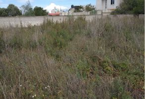 Foto de terreno habitacional en venta en Del Calvario, Quecholac, Puebla, 15961306,  no 01
