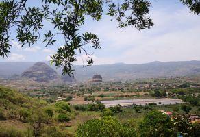 Foto de terreno comercial en venta en Tlayacapan, Tlayacapan, Morelos, 17721511,  no 01