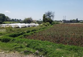 Foto de terreno habitacional en venta en Cabrera, Atlixco, Puebla, 22041450,  no 01