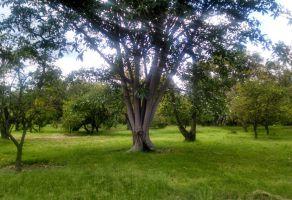 Foto de terreno comercial en venta en La Primavera, Zapopan, Jalisco, 5348661,  no 01