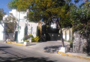 Foto de departamento en renta en Olivar de los Padres, Álvaro Obregón, DF / CDMX, 20635035,  no 01