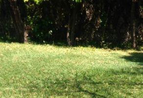 Foto de terreno habitacional en venta en Santa Bárbara, Cuautla, Morelos, 14902585,  no 01
