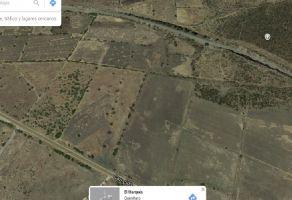 Foto de terreno industrial en venta en Tierra Blanca, El Marqués, Querétaro, 16948573,  no 01