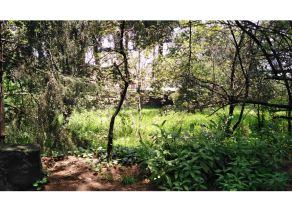 Foto de terreno habitacional en venta en San Miguel Ajusco, Tlalpan, DF / CDMX, 21524926,  no 01