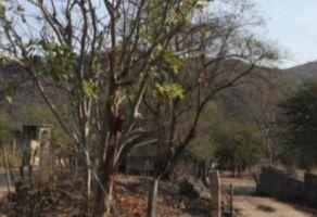 Foto de rancho en venta en Amacuzac, Amacuzac, Morelos, 20118396,  no 01