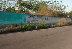 Foto de terreno habitacional en venta en San Antonio Xluch, Mérida, Yucatán, 18753828,  no 01