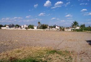 Foto de terreno comercial en venta en San Sebastián El Grande, Tlajomulco de Zúñiga, Jalisco, 21476669,  no 01
