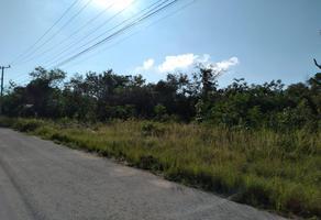 Foto de terreno habitacional en venta en farccionamiento alamos ii 00 , cancún centro, benito juárez, quintana roo, 0 No. 01