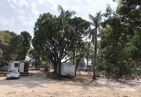 Foto de terreno comercial en renta en favor solicitar dato 1, palmira tinguindin, cuernavaca, morelos, 20345138 No. 01