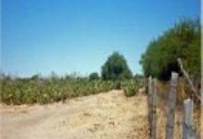 Foto de terreno habitacional en venta en Hacienda Grande, Tequisquiapan, Querétaro, 5810275,  no 01
