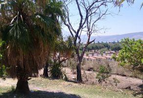 Foto de terreno habitacional en venta en Jocotepec Centro, Jocotepec, Jalisco, 6572850,  no 01